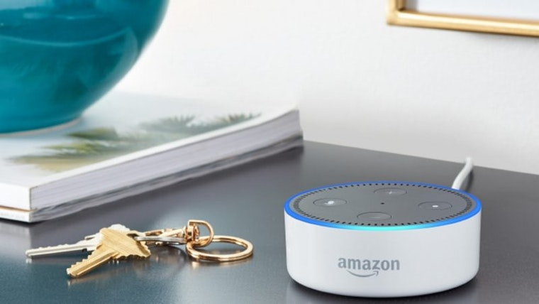 Amazon Echo branding AI