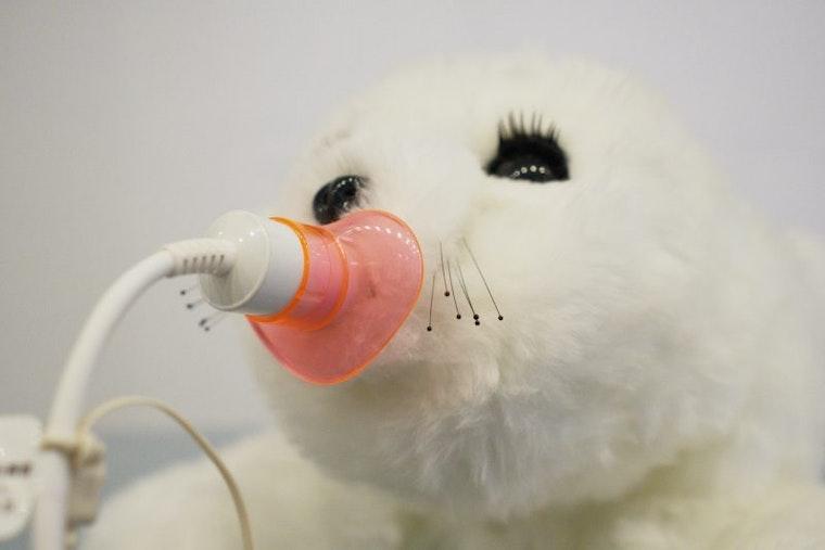 Paro therapeutic seal; Branding for AI